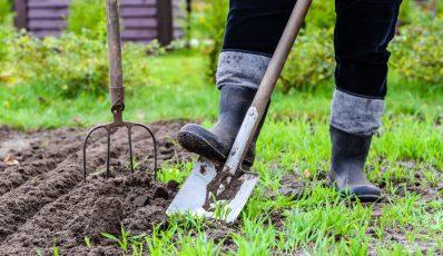 Wie man einen Garten gräbt